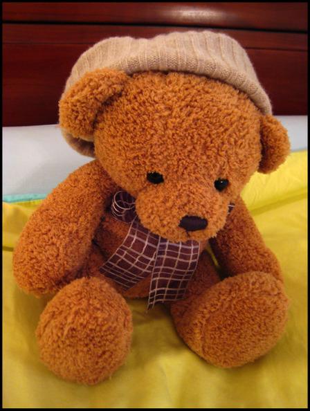 Teddy_ski_cap