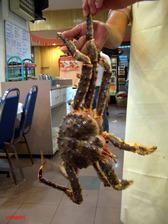 Alaskan_crab
