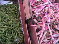 Beans_french_and_cranberry