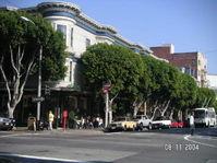 Gough_st_sidewalk_trees