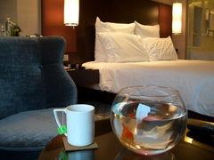 Hilton_room_fish