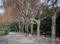 Luxun_park