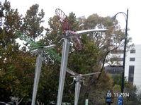 Scene_sj_park_insect_swarm