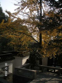 Suzhou_tiger_hill_park