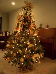 Xmas_tree_2005